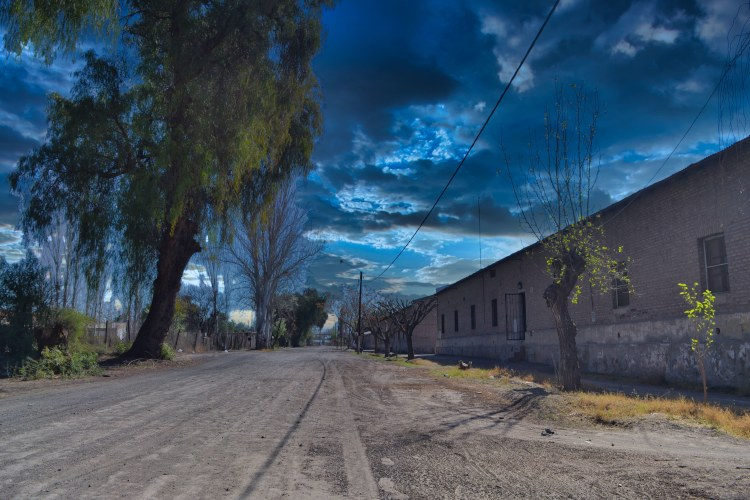 https://culturaysabores.com.ar/images/2020/barrio_colonial_plantel_092020/pic-4.jpeg